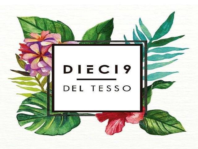 CERVECERÍA DIECI9 DEL TESSO