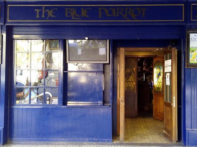 THE BLUE PARROT,