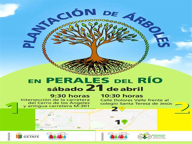 Perales del Río protagonista de dos plantaciones el próximo sábado