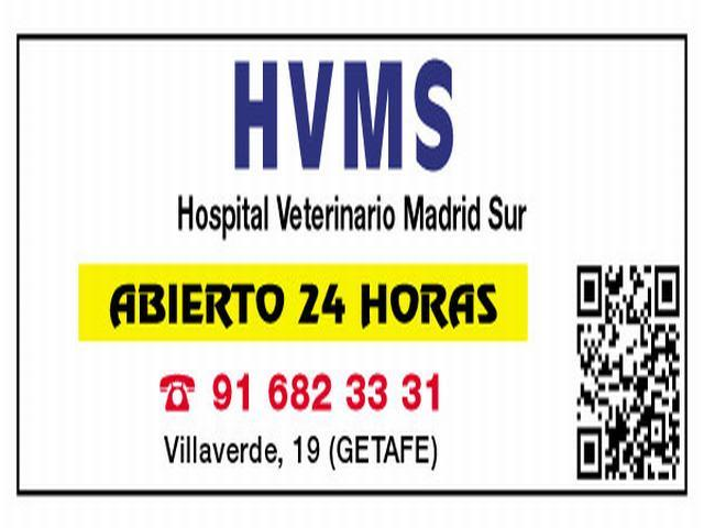 HOSPITAL VETERINARIO MADRID SUR, CLÍNICA VETERINARIA
