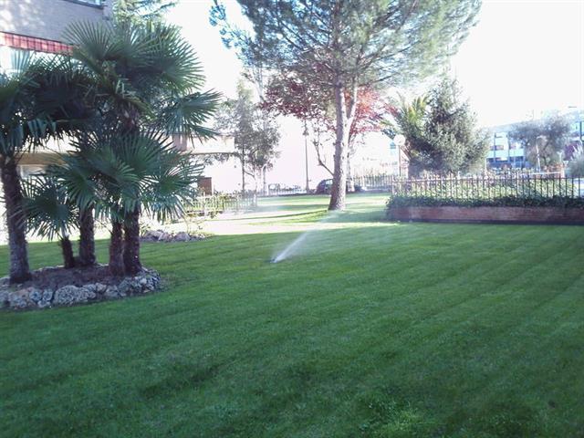 20% Descuento en mantenimiento de jardines