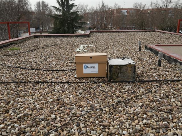 El Ayuntamiento pone en marcha un proyecto para proteger a las abejas y evitar que causen molestias a los vecinos