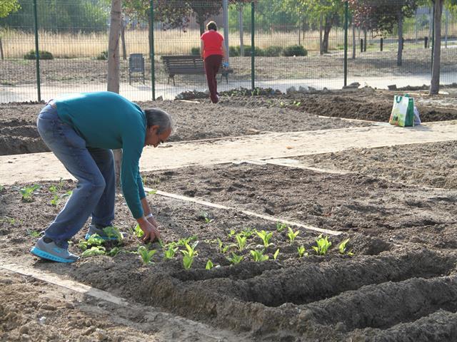 Un proyecto del Ayuntamiento y entidades locales impulsará la participación de las familias en actividades de ocio