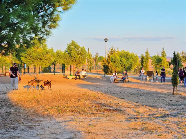 El Ayuntamiento de Torrejón de Ardoz incrementa a 300 euros la sanción por no recoger los excrementos caninos